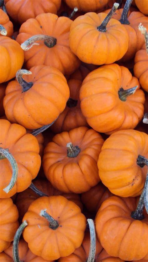 Finally October